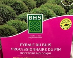 PYRALE DU BUIS INSECTICIDE