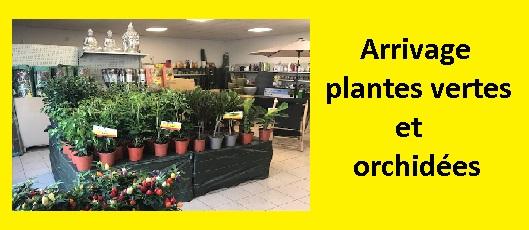 Jardinerie Sautron : plantes, abris de jardin, outils ...